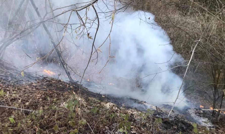 Waldbrand bei Ratting